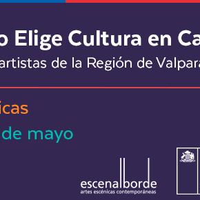 """NUEVO PLAZO. Iniciativa para artistas de la Región de Valparaíso """"Elige Cultura en Casa"""""""