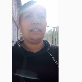 María Francisca Zamora Olivera - Movimiento consciente infantil