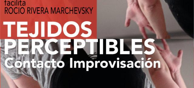 LUNES de CONTACTO IMPROVISACIÓN con taller TEJIDOS PERCEPTIBLES